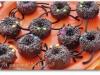 araignees-donuts-6