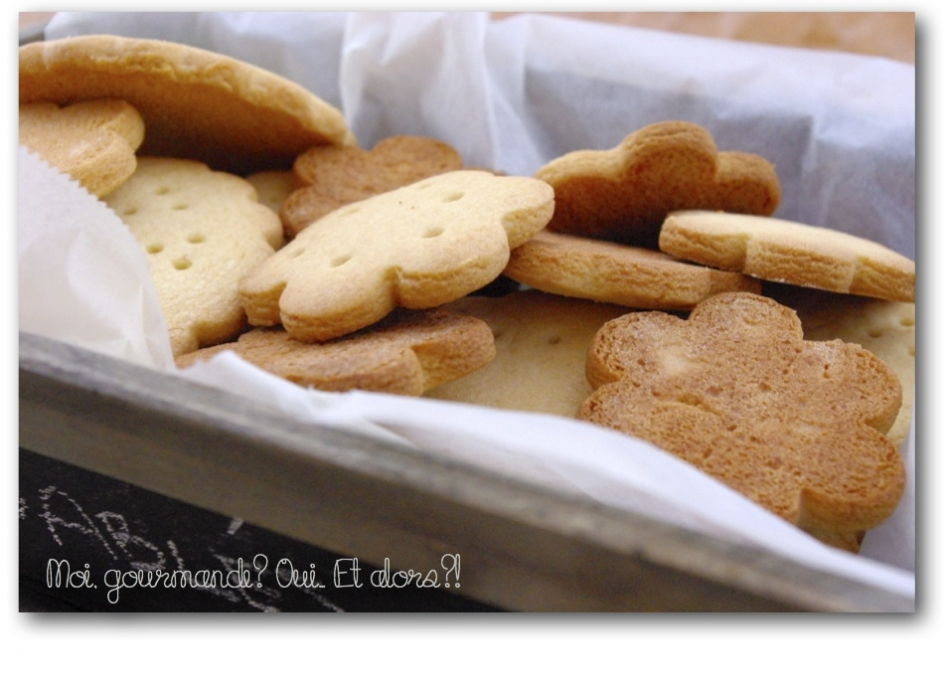biscuits-malt-4