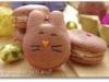 macarons-lapins-1